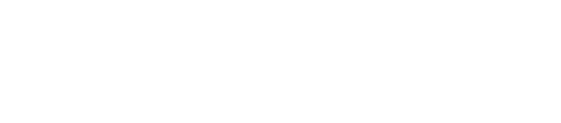 Elder-Law-Immersion-Camp-for-non-attorneys-logo--WHITE